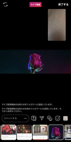 音無 インスタ 動画